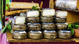 Gebratener Käse
