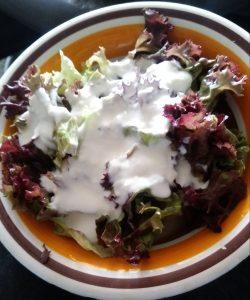Lollo rosso Salat mit Joghurt-Honig-Dressing